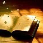 la-novela-y-los-elementos-que-la-componen-e1389188909839